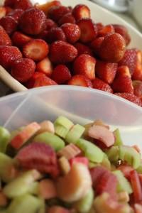 rhabarber_erdbeeren